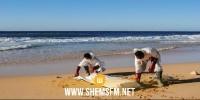 بنزرت: العثور على جثة آدمية على شاطىء رأس انجلة