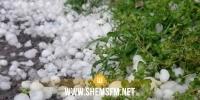 الكاف: تضرر أكثر من 200 هك من الأشجار المثمرة ومساحات الحبوب بسبب نزول البرد