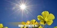 طقس اليوم: إرتفاع نسبي في درجات الحرارة