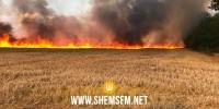 جندوبة: السيطرة على حريق أتى على 4 هكتارات من حقول القمح
