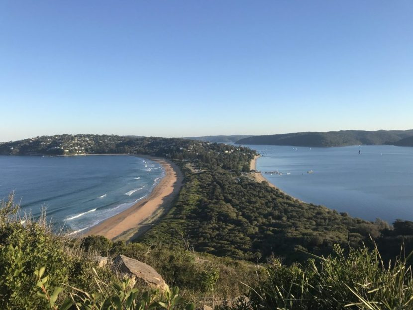 palm-beach-sydney-australia