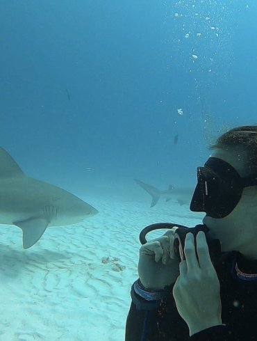 woman scuba diving with bull sharks