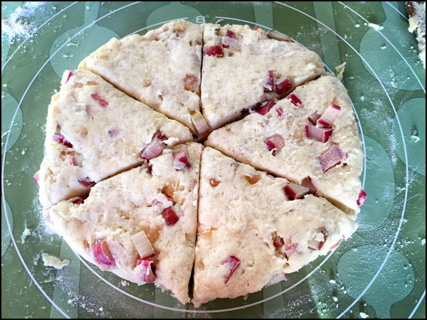 Rhubarb Scones | She Paused 4 Thought
