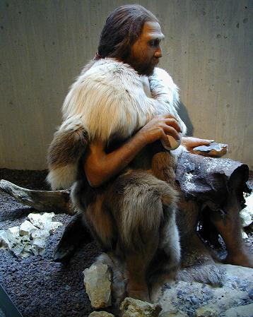 Unique Facts About Europe Neanderthal Man