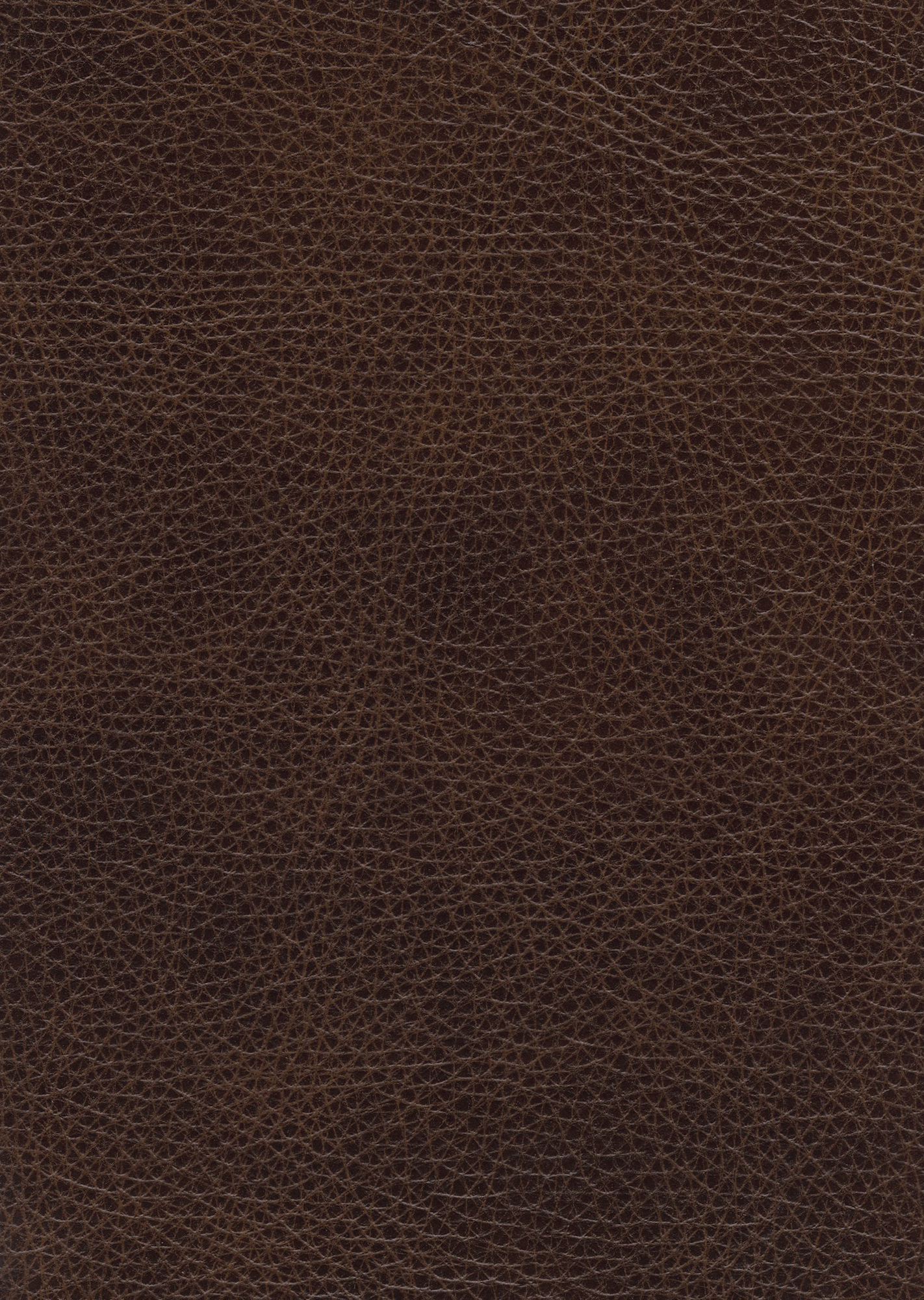 Montana Brown  Sherborne Upholstery