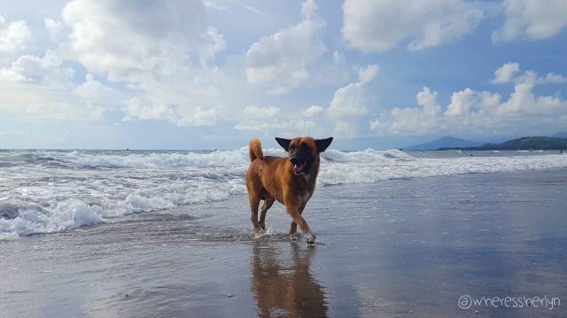 Liwliwa Beach Zambales