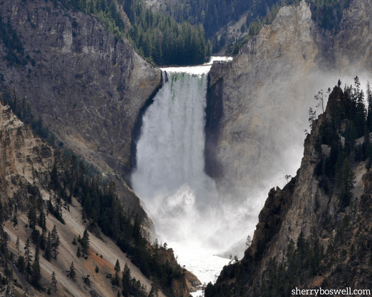 Kids to Parks Day: Celebrate May 19 with a trek to a local or national park. Yellowstone is calling!