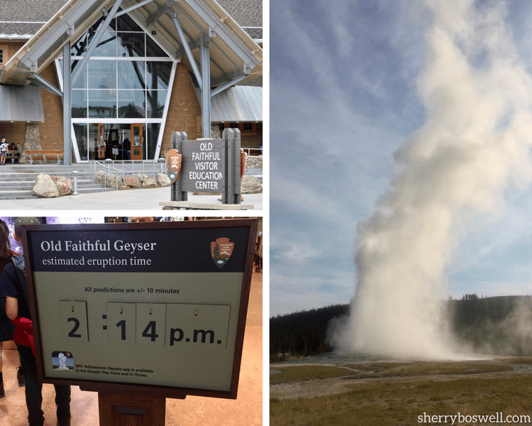A Yellowstone National Park vacation wouldn't be complete without a trip to Old Faithful; geyser eruption times as estimated and usually occur every 1 1/2 hours.