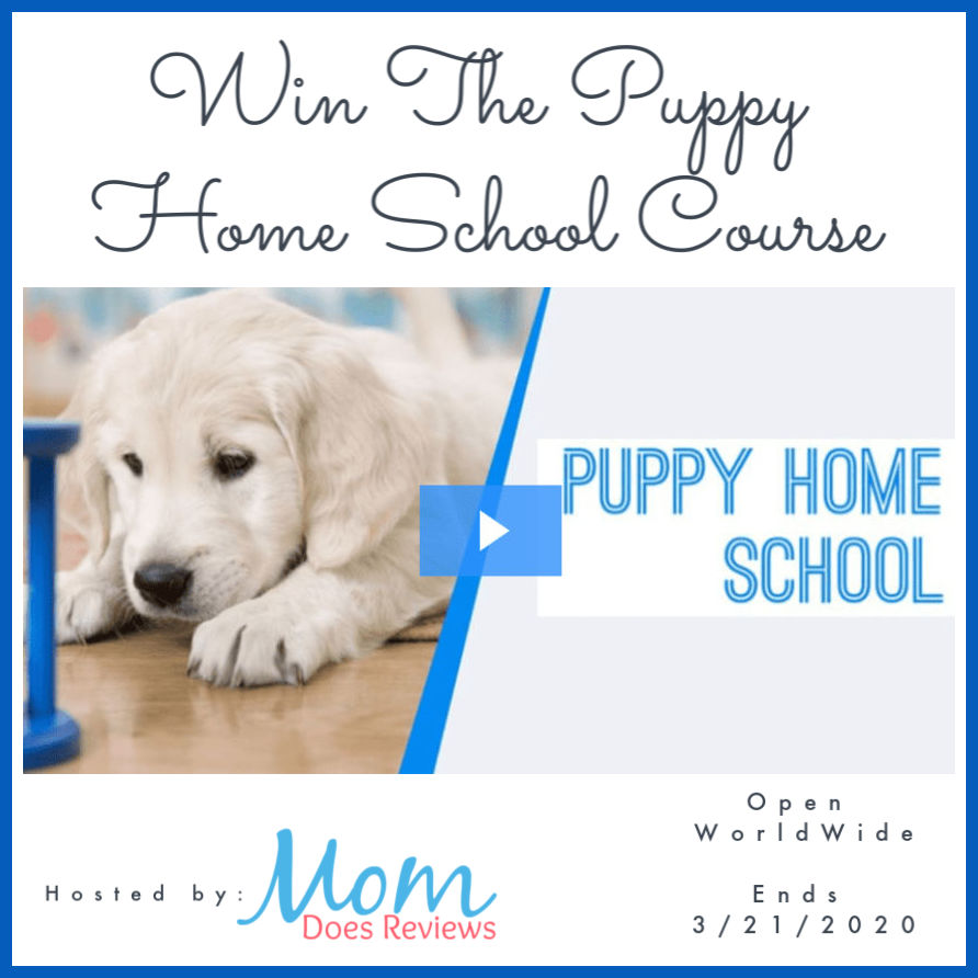 The Puppy Home School Course