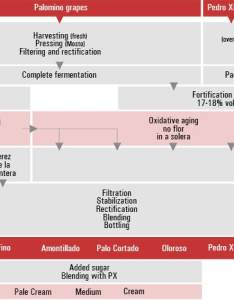 Sherry production diagram also process sherrynotes rh