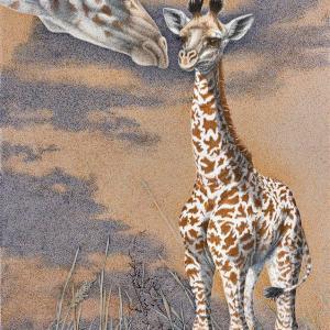 Sherry Steele Artwork - Life Coach   Giraffes