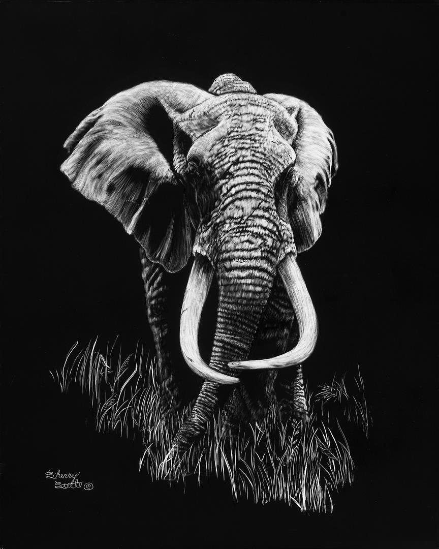 Mawingu | Elephant