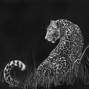 Sherry Steele Artwork - Moonlight Moment | Leopard