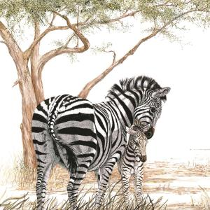 Sherry Steele Artwork - Only a Mother Knows | Zebras