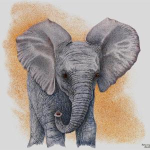 Sherry Steele Artwork - Promises | Elephant