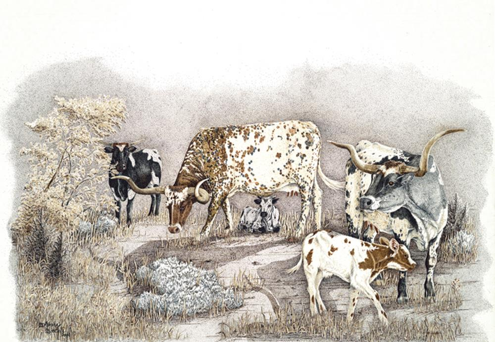 Sagebrush Babes | Longhorns