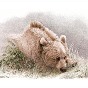 Sherry Steele Artwork - Sentimental Journey | Bear