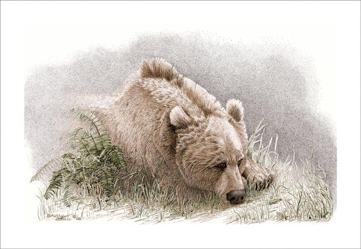 Sentimental Journey | Bear
