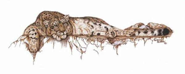 Sherry Steele Artwork - High Mountain Muse | Leopard