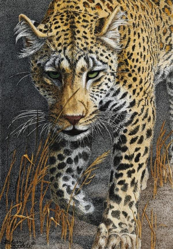 Sherry Steele Artwork - Shadowalker - Leopard