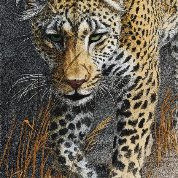 Sherry Steele Artwork - Shadowalker - Leopard