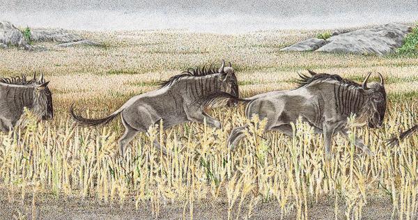 Sherry Steele Artwork - Perpetual Motion II - Wildebeest