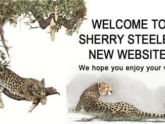 Sherry Steele Artwork