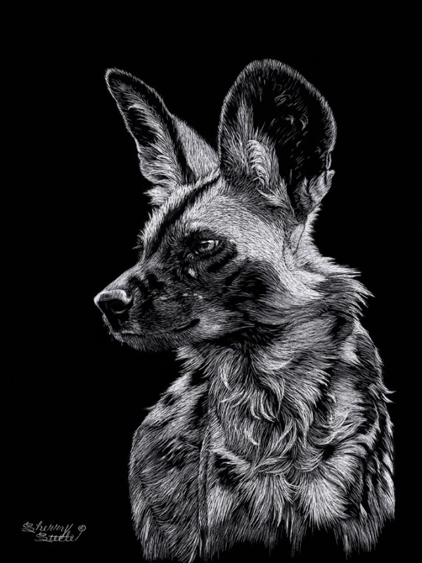Painted Hunting Dog Artwork by Sherry Steele