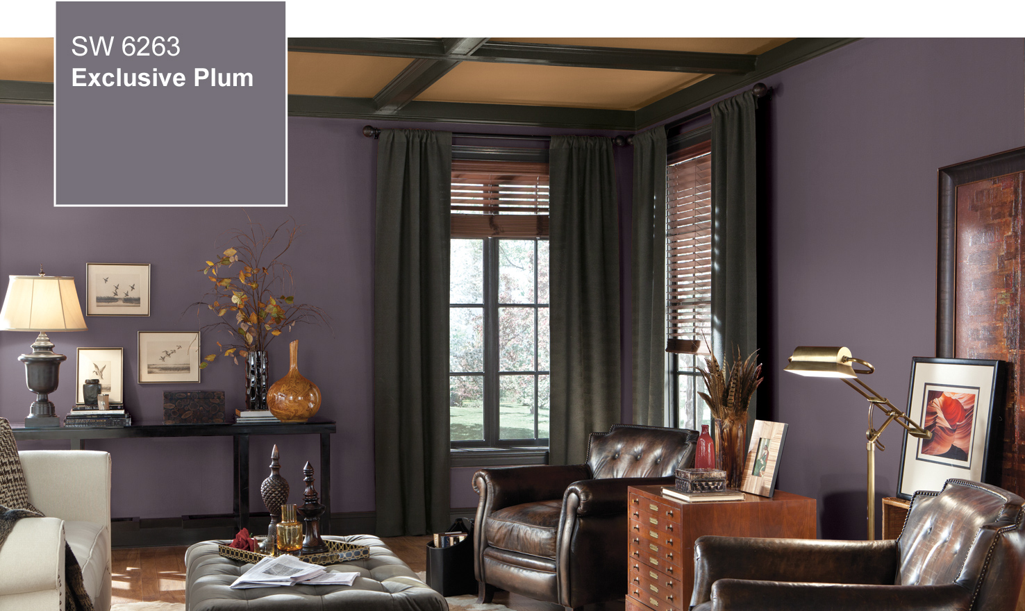 These diverse paint color ideas, from bold red to beige, are perfectly suited to small living rooms. 2014 Color Of The Year - Exclusive Plum (SW 6263) by ...