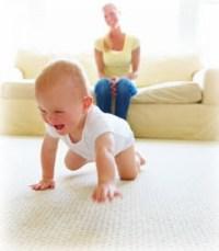 Sherwood Park Carpet Cleaner