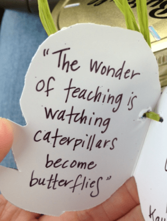 wonder of teaching