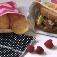 Reusable Lunch Bags Starting at $8.99 (set of 3)