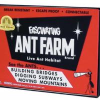 Uncle Milton Vintage Ant Farm For $8.99 Shipped