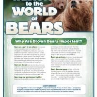 Disneynature Bears Free Printable Activity Sheets!