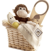 Baby Aspen Monkeys Gift Set For $26.22 Shipped
