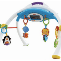 Fisher-Price Apptivity Gym For $22.99 Shipped