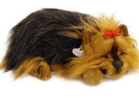 Great Gift Idea!! Perfect Petzzz Review