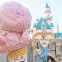 Why You Should Download the Disney Parks App