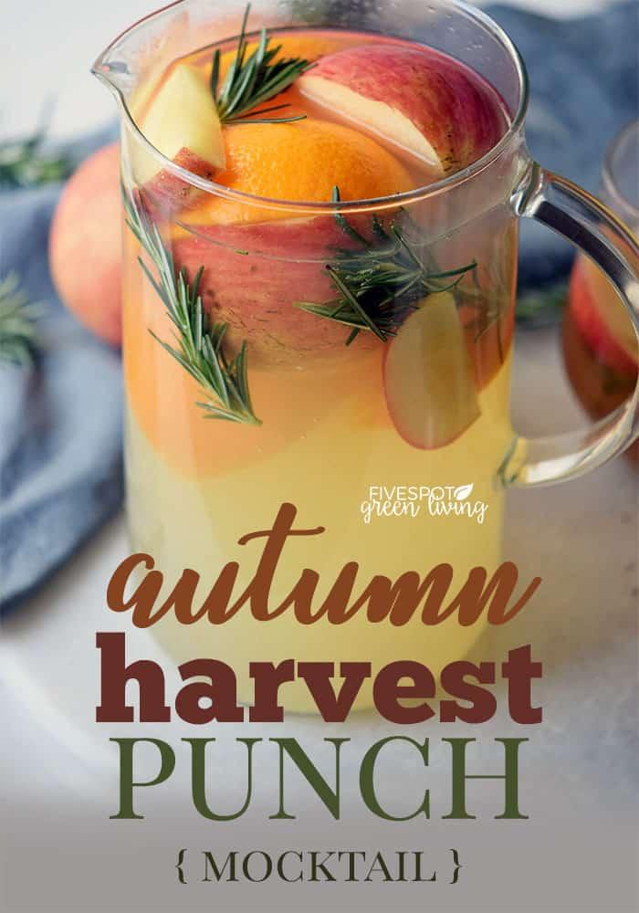 autumn harvest punch recipe