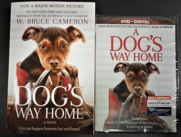A Dog's Way Movie