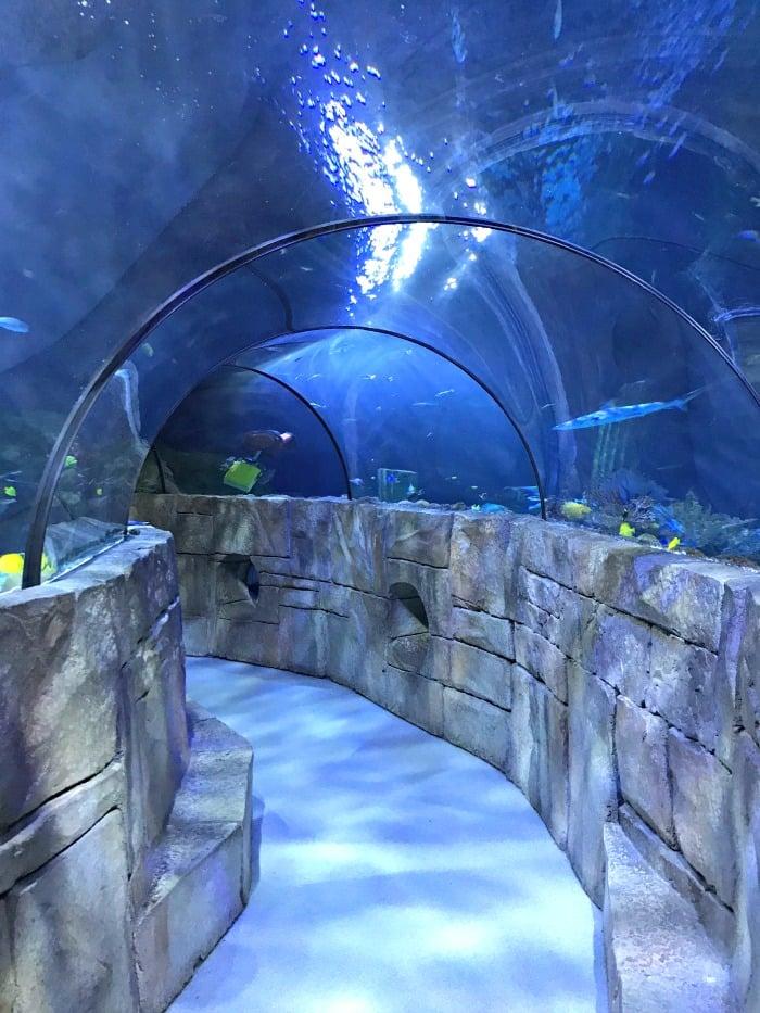 lego land aquarium