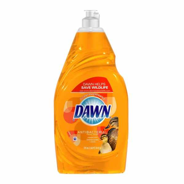Dawn Antibacterial Hand Soap Diswashing Liquid Orange Scent Shespeaks