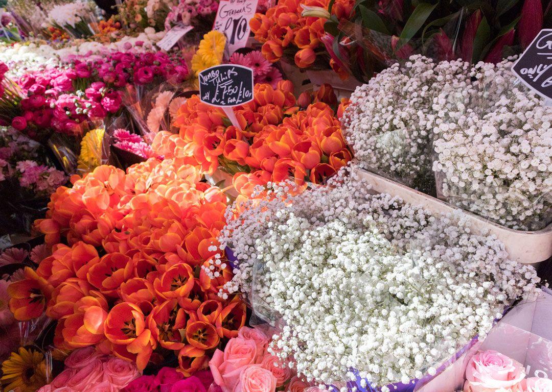 She talks Glam | Columbia Road Flowers
