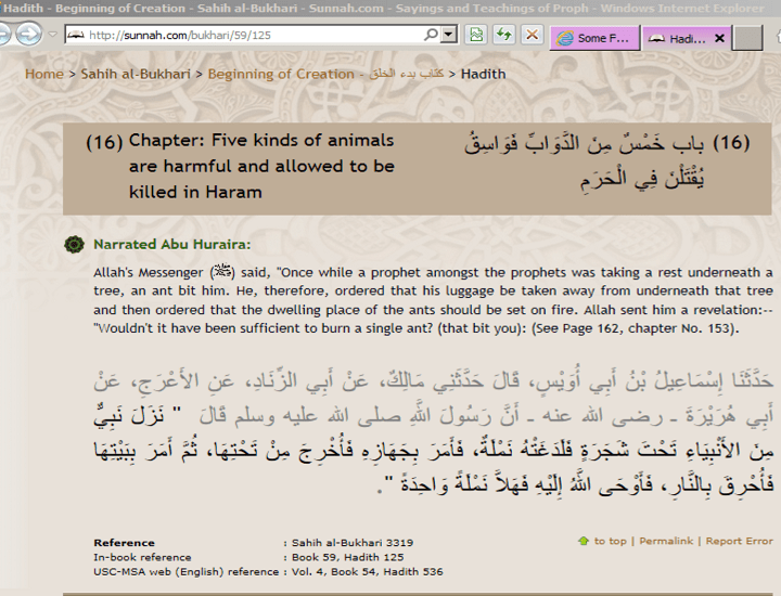 A prophet set whole group of ants on fire