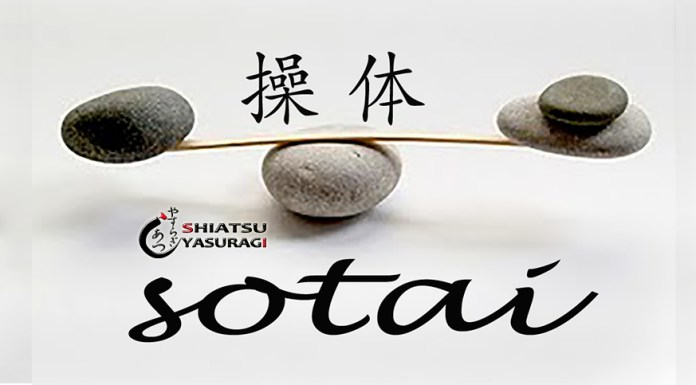 Sotai Reeducacion Postural Integral