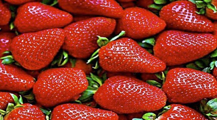 Fresas Frutas de Primavera Propiedades