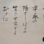 Shiatsu Asociaciones, Asociaciones de Shiatsu