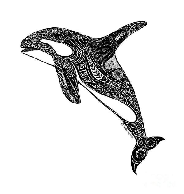 Spirit Animals Orca & Eagle Walk - Shift- Coach