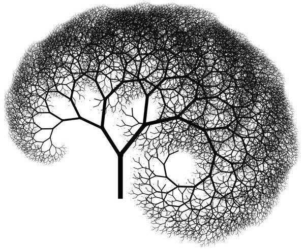 Image result for brain fractals
