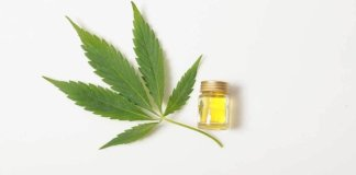 cannabis leaf with cbd oil